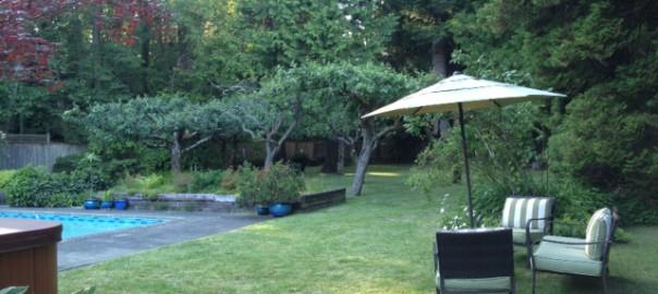 silent practice garden wear meditation practice takes place
